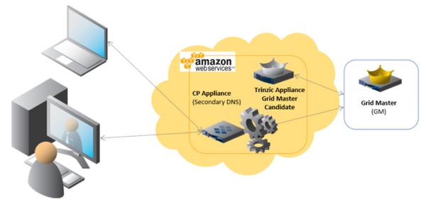 API Access | Automation