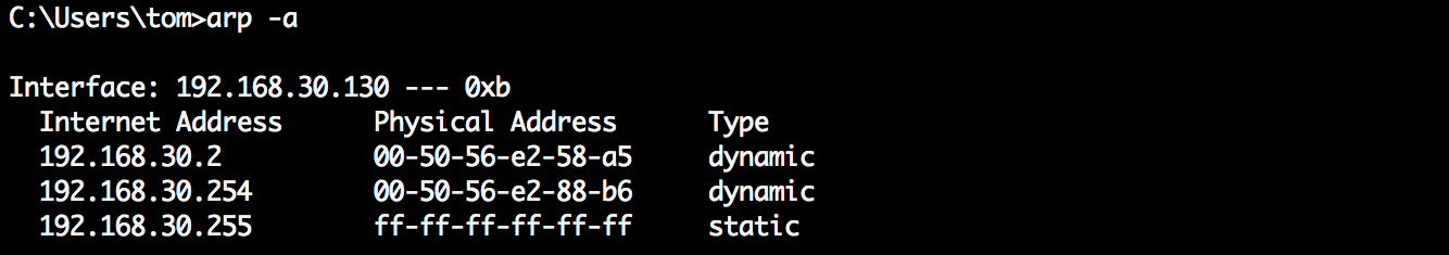 IPv4 ARP cache from a Windows 7 VM