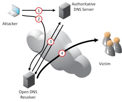 Open DNS Resolver